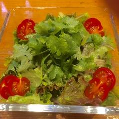 料理メニュー写真パクチーサラダ