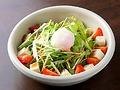 料理メニュー写真京とうふと水菜のサラダ/ハーフ