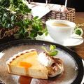 料理メニュー写真チーズタルト