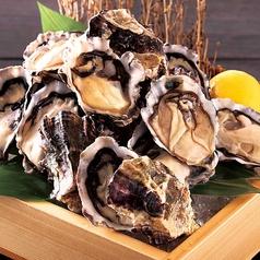 ニュージーランド産 活〆牡蠣