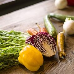 色とりどりな有機野菜は栄養も豊富。