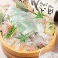 <看板メニュー『泳ぎイカ お造り』>舌の上で広がる旨みと甘み。大阪府内はもちろん、近隣県にもリピーターを持つとびきりの味をぜひ!鮮度を落とさないための、イカ専用の輸送手段&ルートを開発したり、店内でも鮮度を保つための水槽を設置したり…美味しさを追求した一品!