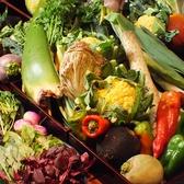 旬のお野菜を直接仕入れます。