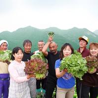 契約農家から新横浜へ直送のお野菜!