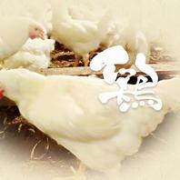 新鮮な九州産朝びき鶏を使用!
