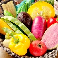 新鮮な野菜をご用意!