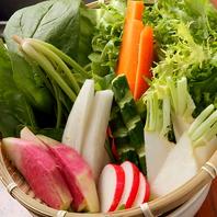 新鮮な地元野菜を使用♪