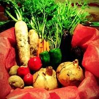 自慢のお野菜は料理に活かしてます!