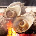 刺身や浜焼きなど豊富な海鮮料理!