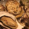 料理メニュー写真厚岸産生牡蠣