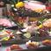 蕎麦,そば,ソバの通販サイト(高知県)