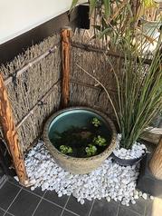 店内入口で元気なメダカと金魚がお出迎え♪魚好きな店主の憩いの場でもあります