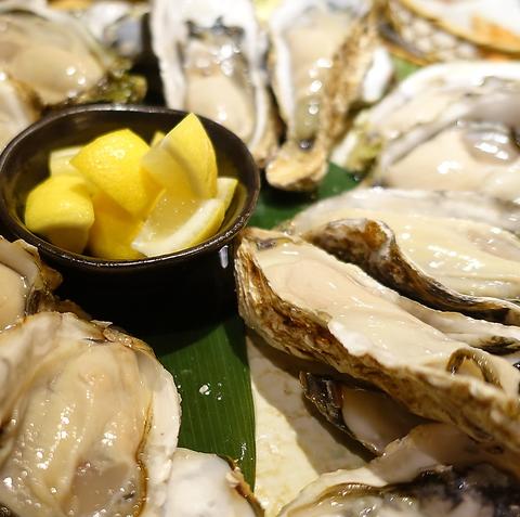 その時期一番の牡蠣と新鮮な食材を使用した【牡蠣+居酒屋】のお店です!