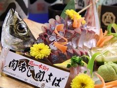 焼鳥房 花鳥風月 中央町店の特集写真
