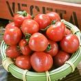越路☆山本健康農園産【さくらんぼトマト】!すずきち以外では食べられない本当にプレミアムなトマト!皮が薄くフルーツのような甘さが特徴!冷やしてバーニャカウダで楽しむのがおススメ♪