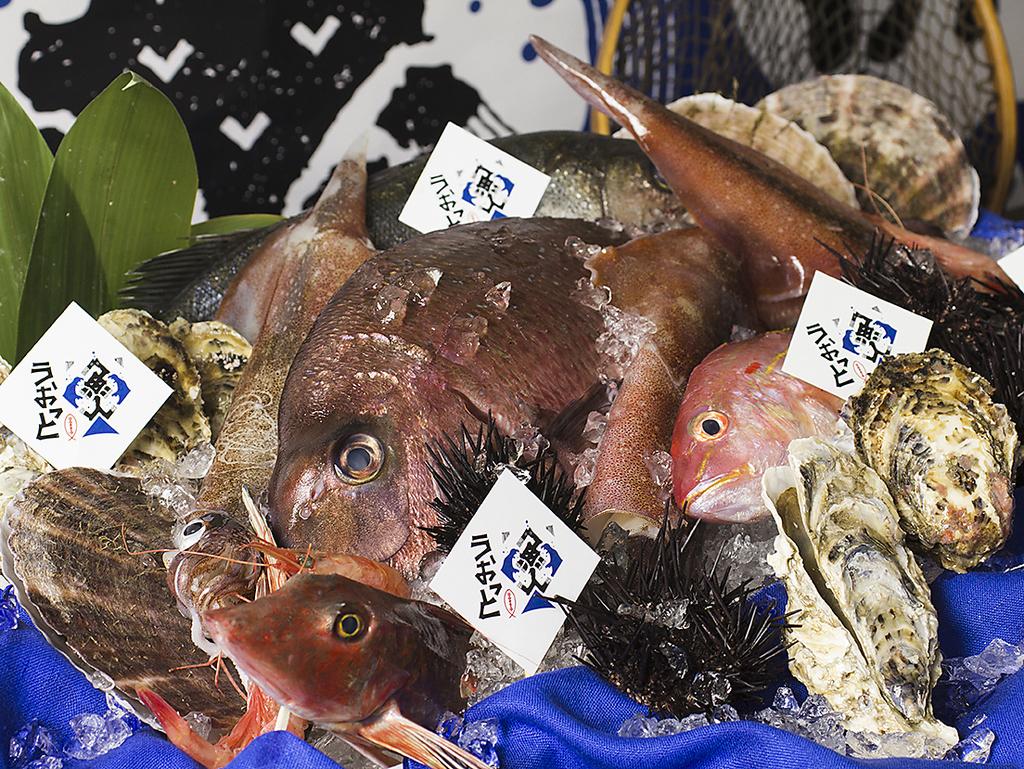 北海道海鮮 個室居酒屋 うおっと ~魚人~|店舗イメージ8