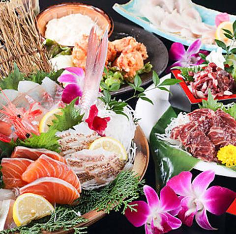 赤鶏と九州料理 島津