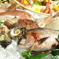日替わりのおすすめ鮮魚は必見!