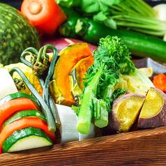 料理メニュー写真季節野菜のせいろ蒸し