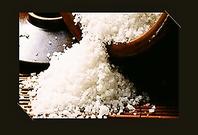 伝統的塩田製法のイタリア天日塩