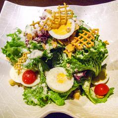 料理メニュー写真新鮮野菜のシーザーサラダ