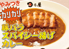 日乃屋カレー 土浦店のおすすめ料理1