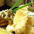 料理メニュー写真チーズ春巻き/揚げ出し豆腐/ごぼう肉巻きやわらか煮