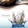 Oyster Plates オイスタープレート ラゾーナ川崎店のおすすめポイント2