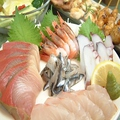 料理メニュー写真お刺身/アジ/タコ/サンマ/イカ/カンパチなど各種