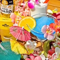 ハワイアサン HawaiaSunのコース写真