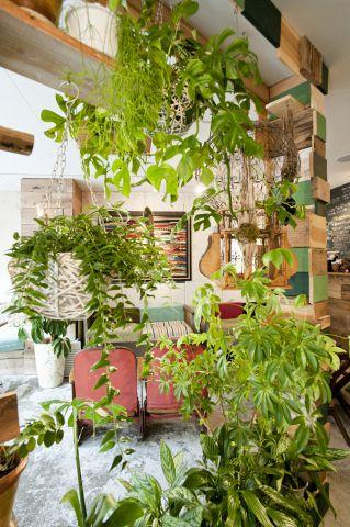 サロ」とは、フィンランド語で深い森の意味。その名の通り店内には花や緑がいっぱい!