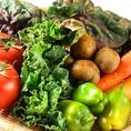 """野菜は契約農家より毎日届く""""朝採れ""""有機野菜。"""