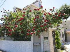 薔薇舘 ラ・ローゼ ブランシュの写真