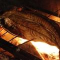 料理メニュー写真トロサバ(1~2名様用で半身もご用意) 半身625円(税抜)