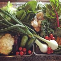 自然農・無農薬のお野菜