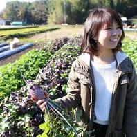 【農家直送!】農家より毎日仕入れた新鮮野菜♪