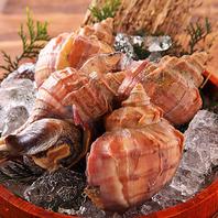 北海道産刺身や活貝を新鮮な状態で食べられる海鮮居酒屋