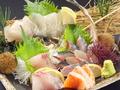 料理メニュー写真鮮魚三種盛/鮮魚五種盛/おまかせ刺し盛