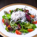 料理メニュー写真極上釜あげシラスのサラダ