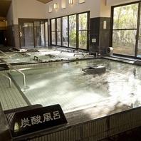 日本では数少ない炭酸温泉を高濃度で再現しています