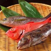 和食や 神楽坂のおすすめ料理3