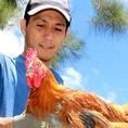 ≪朝〆の新鮮地鶏≫■久米島「赤鶏」■徳島県・阿波尾鶏 産地直送!朝〆だから旨い極旨地鶏!!極上肉にこだわる『にく久』が扱うのは、日本三大地鶏の1つ徳島県産地鶏「阿波尾鶏」と沖縄県産地鶏「赤鶏」。鮮度抜群、最高品質なので刺しでも炭火でも◎