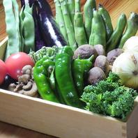 季節野菜を使用した天ぷらも♪