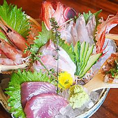 料理メニュー写真松輪漁港直送鮮魚5点盛り