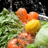 みずみずしい地元野菜のみを使用