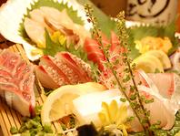 毎日仕入れる鮮魚☆良質な素材にとことんこだわる!