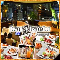 カエルリゾート Kaelu resort 新宿店の写真
