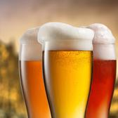 クラフトビールとスパイスカレー エリフジ craftbeer&spicecurry Erifujiの雰囲気2