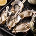料理メニュー写真新鮮で美味しい生牡蠣