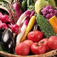 【大船×半個室】朝取れ新鮮の鎌倉野菜を使用♪